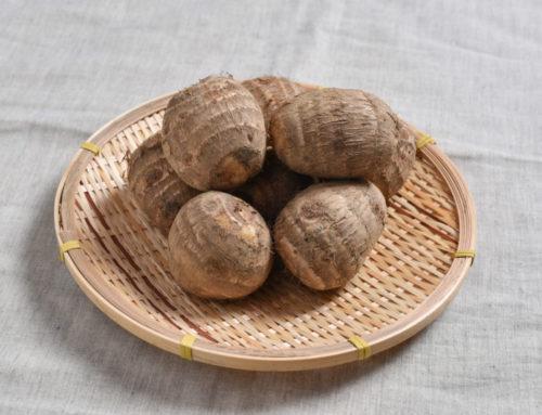 里芋がおいしい季節です。